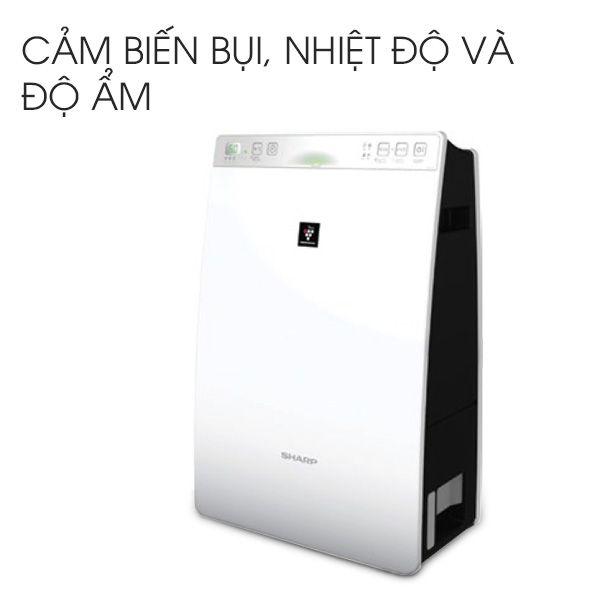 taoam4