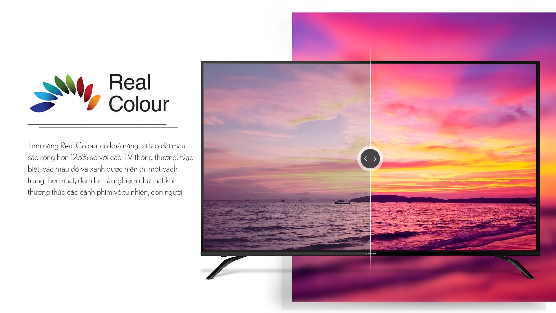 TV-4T-C60AL1X_05